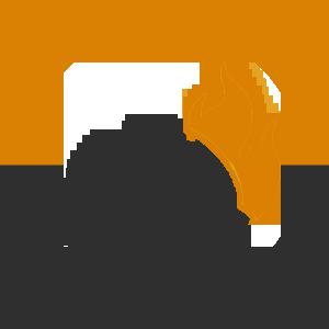 Тимберблок (Timberblock) не горит при возгорании в Алматы от MAXstone