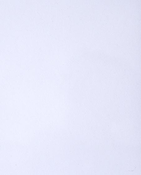 Белый глянец - Ламинированный шпон для мебели и дверей в Алматы